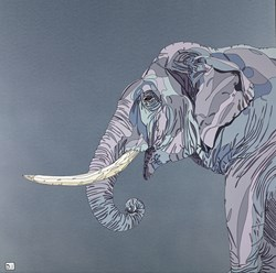Elephant III by Dylan Izaak - Original Painting on Aluminium sized 36x36 inches. Available from Whitewall Galleries